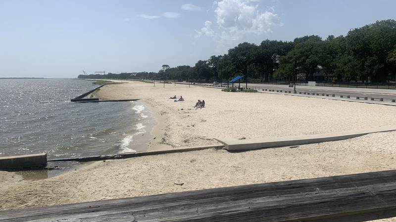 The blue-green algae bloom has spread into Pascagoula, officially putting all South Mississippi...