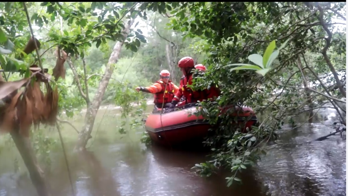 A 26-year-old D'Iberville man was stranded in a tree for over an hour after overturning a kayak...