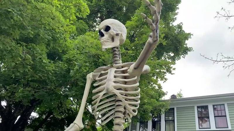 """A grim sign on the giant skeleton's pelvis reads, """"Not vaccinated – see you soon, idiots."""""""