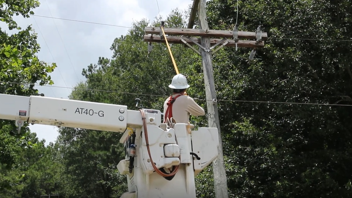 Radio station knocked off air after tree crashes into powerlines in Saucier