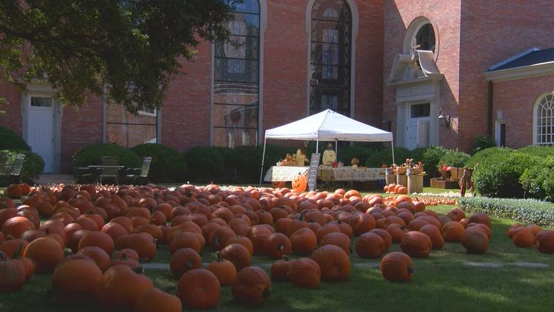 The First United Methodist Church in Laurel has decided to continue its annual pumpkin patch,...