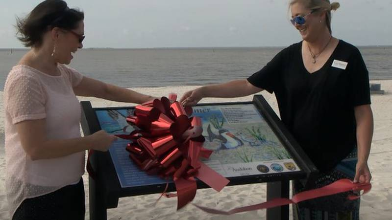 On Friday, ribbon cutting ceremonies were held for the new Black Skimmer sign just east of...