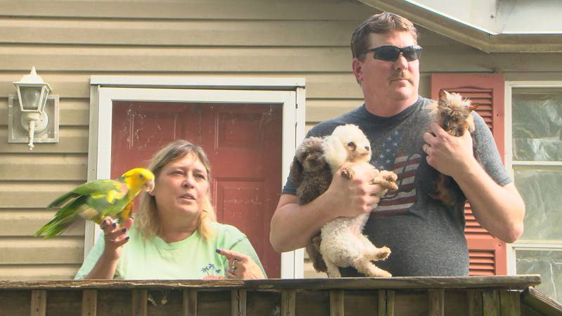 Last May, Daniel and Sharon Bertok were arrested after authorities seized 108 animals from...