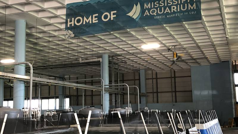 A look at the Mississippi Aquarium research center