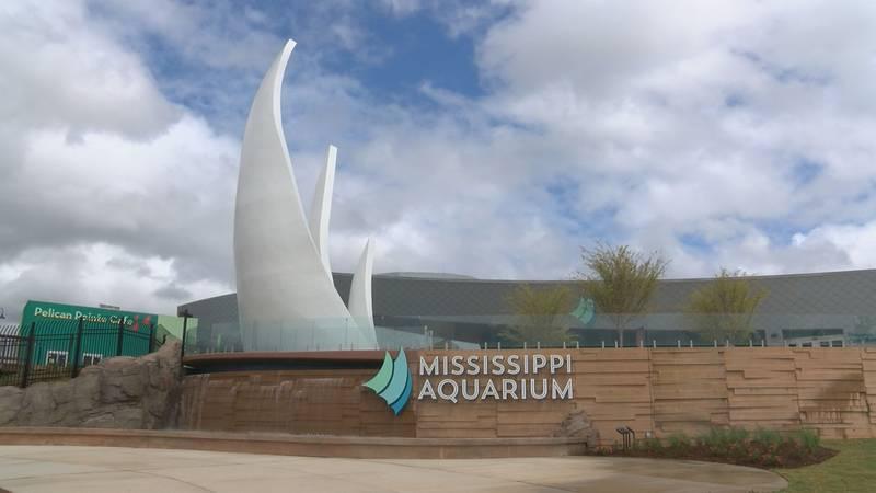 The Mississippi Aquarium opens Saturday.