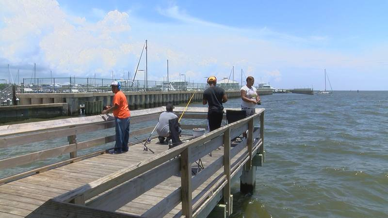 People were fishing at the Pass Christian Harbor despite MDEQ warnings about the toxic algal...