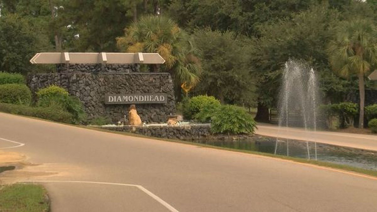 The person conducting the city audit said Diamondhead is being run remarkably well for how...