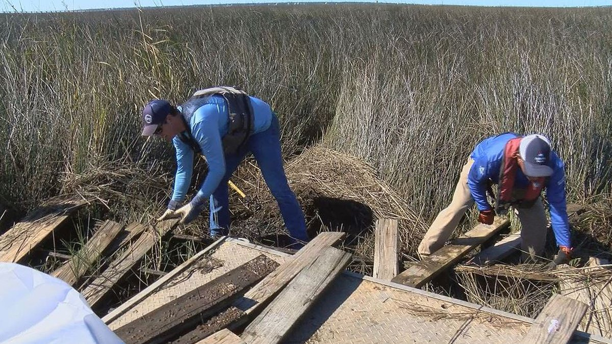 Most of the volunteers in Mississippi Power's Renew Our  Rivers cleanup on Thursday were...