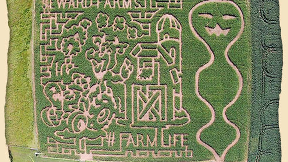 The winner will receive a Family 4-pack of tickets to the Seward Farms Corn Maze in Lucedale.