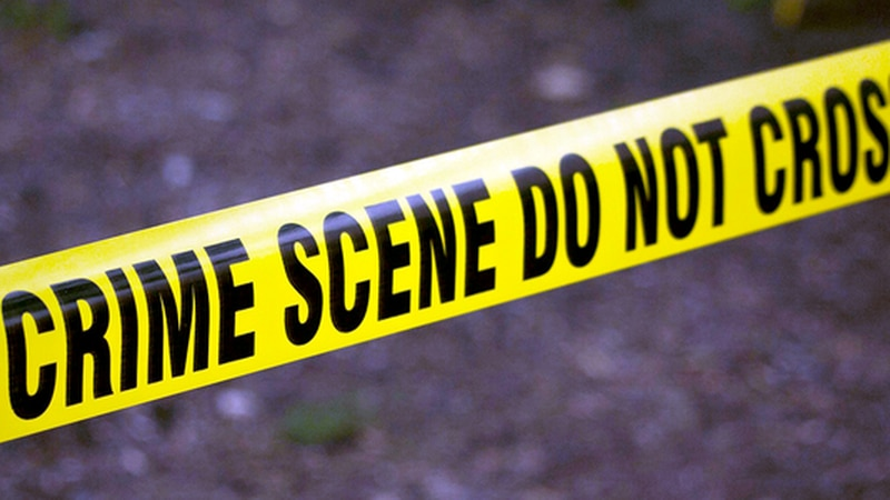 GF Default - Chadbourn police investigating after man fatally shot at home