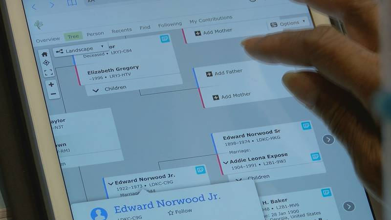 A member of the Ocean Springs Genealogical Society uses the FamilySearch software on Friday.