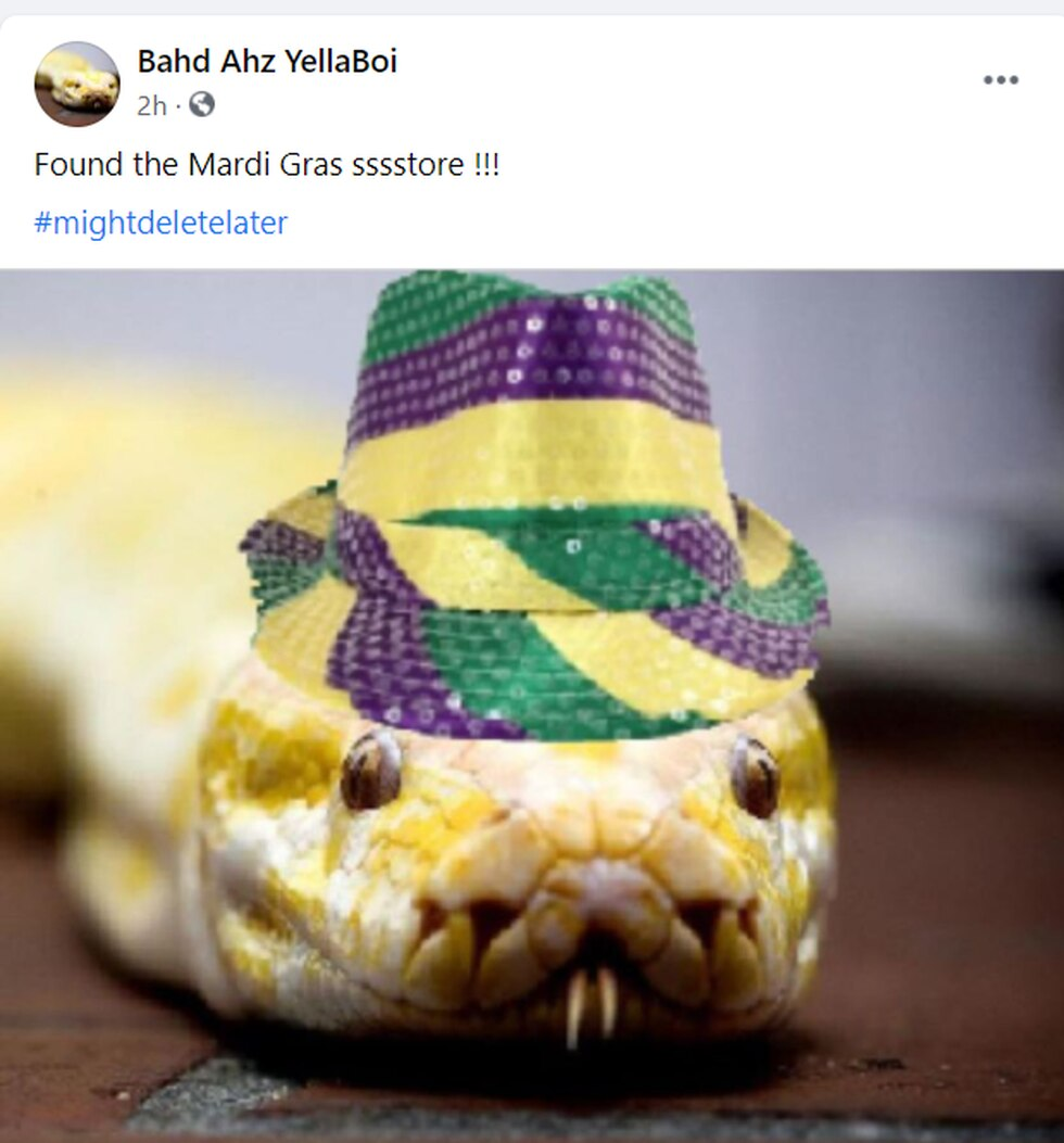 Besides numerous memes about the 12-foot snake being texted from friend-to-friend, she now has...