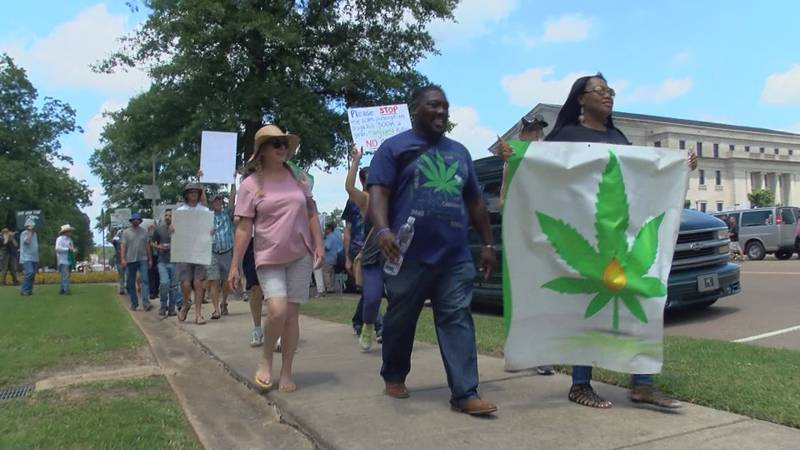 Protestors rallied outside the high court days after justices ruled to overturn Initiative 65,...