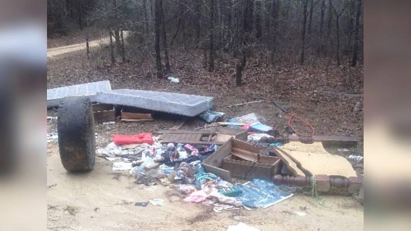 Recent dumping on the Bienville Ranger District.