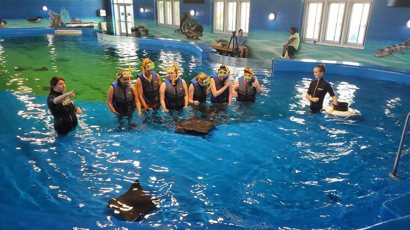 The summer camp group feeds fish to the school of stingrays at Ocean Adventures Marine Park.