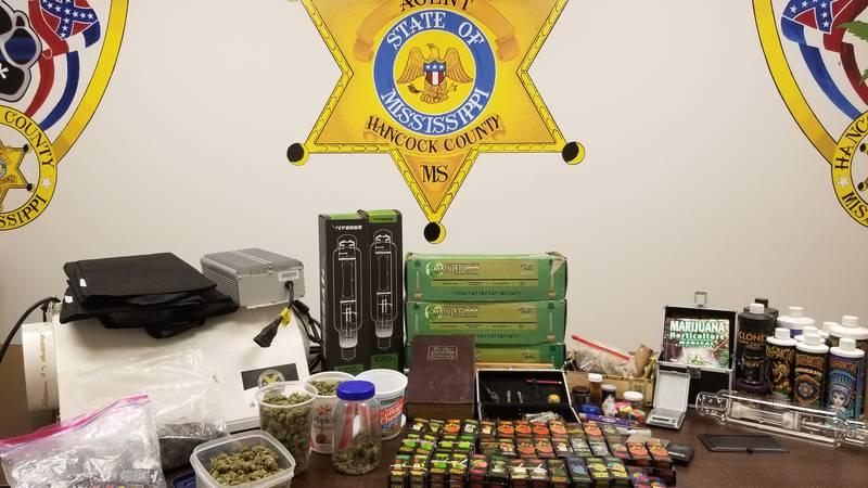 Hancock County narcotics agents say they uncovered a marijuana grow operation, live marijuana...